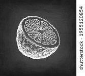 half of bergamot orange. chalk... | Shutterstock .eps vector #1955120854