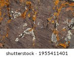 texture of natural stone  rough ... | Shutterstock . vector #1955411401