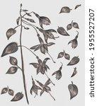 abstract illustration of... | Shutterstock . vector #1955527207