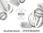 melons with tropical leaves... | Shutterstock .eps vector #1955583694