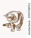 sepia vector illustration of... | Shutterstock .eps vector #1955708911