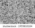 grunge texture of chaotic... | Shutterstock .eps vector #1955810104