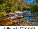Mills River In Pisgah National...