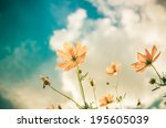 yellow cosmos flower and blue... | Shutterstock . vector #195605039