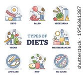 types of diets and nutrition... | Shutterstock .eps vector #1956361387