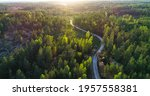 Aerial Over A Winding Forest...