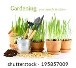 green grass in flowerpots and... | Shutterstock . vector #195857009