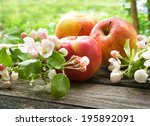Apple With Flowers On Wooden...