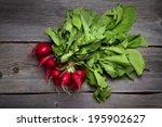 fresh home grown radishes on... | Shutterstock . vector #195902627