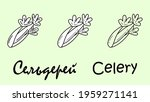 a set of three celery objects...   Shutterstock .eps vector #1959271141