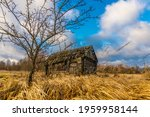 abandoned wooden house in a... | Shutterstock . vector #1959958144