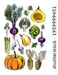 sketch of food vegetables by... | Shutterstock .eps vector #1959999451