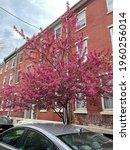 Philadelphia  Pa  Usa   April 2 ...