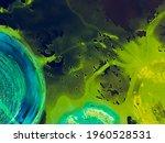 Neuro Graphic. Multicolor...