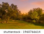 Sunset View Of A Picnic Area...