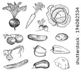 vegetables. hand drawing set of ... | Shutterstock .eps vector #196082534