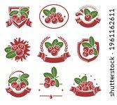 cranberry label icon set.... | Shutterstock .eps vector #1961162611