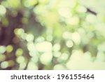 blurred forest background  ... | Shutterstock . vector #196155464