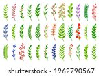 curved green laurel branches...   Shutterstock .eps vector #1962790567