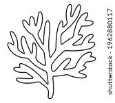 Coral Hand Drawn Doodle Stock...