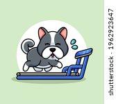 Cute Dog Running On The...