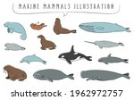 hand drawn marine mammals...   Shutterstock .eps vector #1962972757