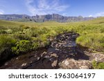 A Mountain Stream  With The...