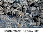 macro beautiful intricate...   Shutterstock . vector #196367789