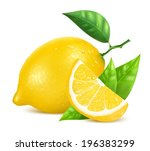 Vector. Fresh lemons with leaves and water drops.