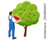 isometric apple orchard  ripe...   Shutterstock .eps vector #1963853647