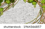 wall  branches liana  ivy....   Shutterstock .eps vector #1964366857