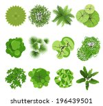 trees   top view. easy to use... | Shutterstock .eps vector #196439501
