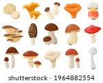 cartoon mushrooms. poisonous... | Shutterstock .eps vector #1964882554