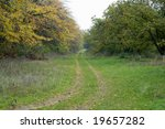 little road through wood at autumn - stock photo