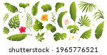 tropical leaves collection.... | Shutterstock .eps vector #1965776521