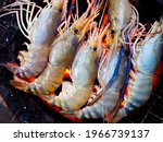 Grilled prawn on flaming grill. Close-up row of raw river prawns are being grilled on the grille on charcoal.