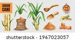sugar cane realistic... | Shutterstock .eps vector #1967023057