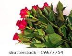 an arrangement of red roses | Shutterstock . vector #19677754