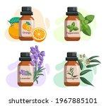 set of glass bottles with...   Shutterstock .eps vector #1967885101