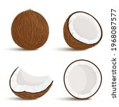 coconut. set of exotic whole ... | Shutterstock .eps vector #1968087577