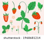 strawberry set. hand drawn...   Shutterstock .eps vector #1968681214