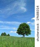 bench under a tree | Shutterstock . vector #19688314