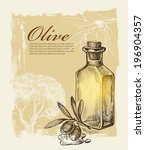 vector hand drawn olive on...   Shutterstock .eps vector #196904357