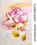 pink rose  artistic sketch... | Shutterstock . vector #1969108471