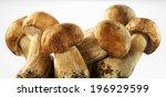 Boletus Mushrooms On A White...