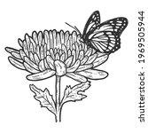 Monarch Butterfly On...
