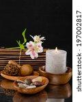 alternative therapy | Shutterstock . vector #197002817