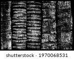 relief vertical trunks palm... | Shutterstock .eps vector #1970068531