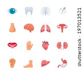 human anatomy icons   flat icon ... | Shutterstock .eps vector #197013521