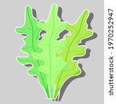 arugula with vegetable garden... | Shutterstock .eps vector #1970252947